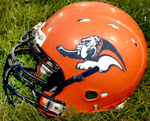 Mahomet-Seymour Bulldogs football